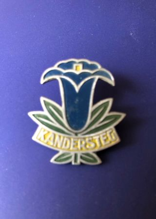 1931 WORLD SCOUT MOOT KANDERSTEG SWITZERLAND,  PARTICIPANT PIN BADGE 4