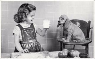 Pet Savers Foundation Girl Child Puppy Dog Baking Rescue Org Postcard D49