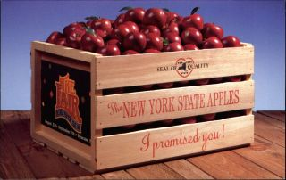 1992 York State Fair Apples Fruit Crate Agriculture Advertising Syracuse Ny