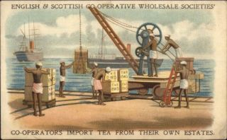 English & Scottish Co - Op Societies Dock Workers Tea Ships Postcard