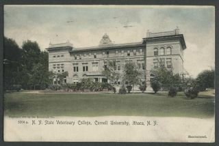 Ithaca Ny: 1905 Hand - Colored Postcard N.  Y.  State Veterinary College At Cornell