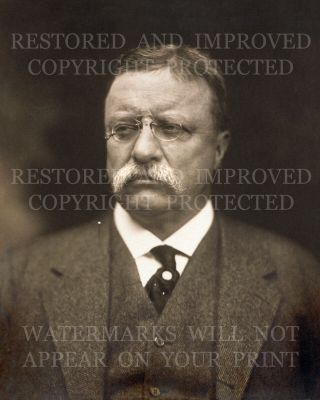 Us President Theodore Teddy Roosevelt 1915 Portrait Photo 5x7 Or Request 8x10 Or