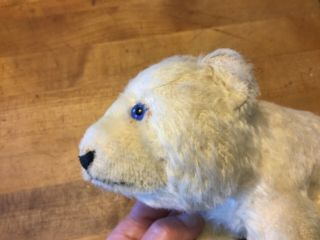 "Vintage Antique Steiff Polar Bear White Mohair 6"" Tall No Id"