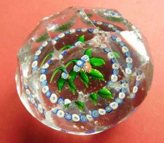 Antique Baccarat Faceted Paperweight With Millefiori Flowers