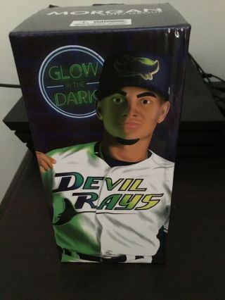 Willy Adames Glow - In - The - Dark Bobble Head Nib Tampa Bay Rays