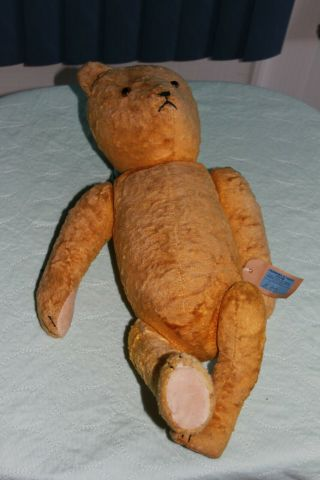 Teddy Bear.  Antique,  Probably 1940.  Bought In Pembroke,  Wales.  Old And Lovely.