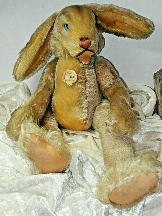 """Steiff Lulac Rabbit W/ Button & Tag Blue Eyes 24 """" Jointed German"""