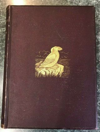 Water Birds Of North America Vols.  1 & 2 Color Plates Baird,  Brewer,  Ridgway1884